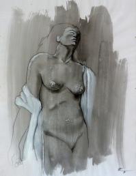 74 x 50, graphite sur encre, 2013