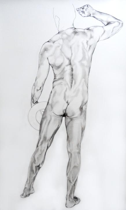 250 x 150, graphite et pierre noire sur papier, 2015